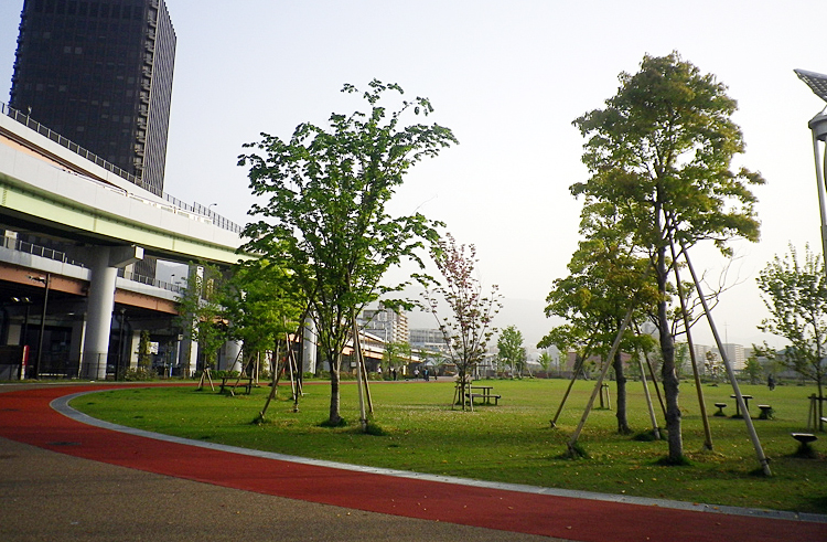 skatepark_0007