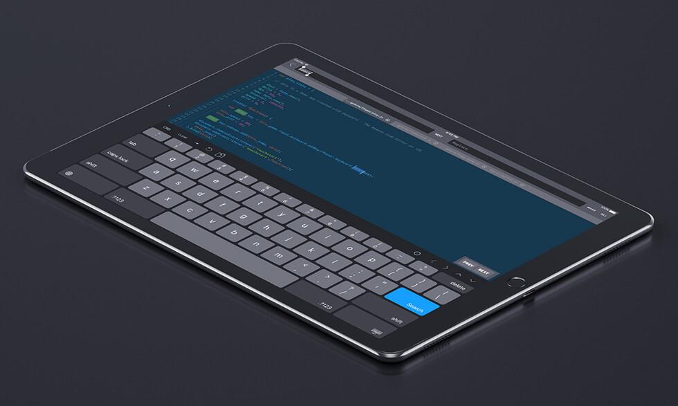 iPad Pro でコーディング GoCoEdit