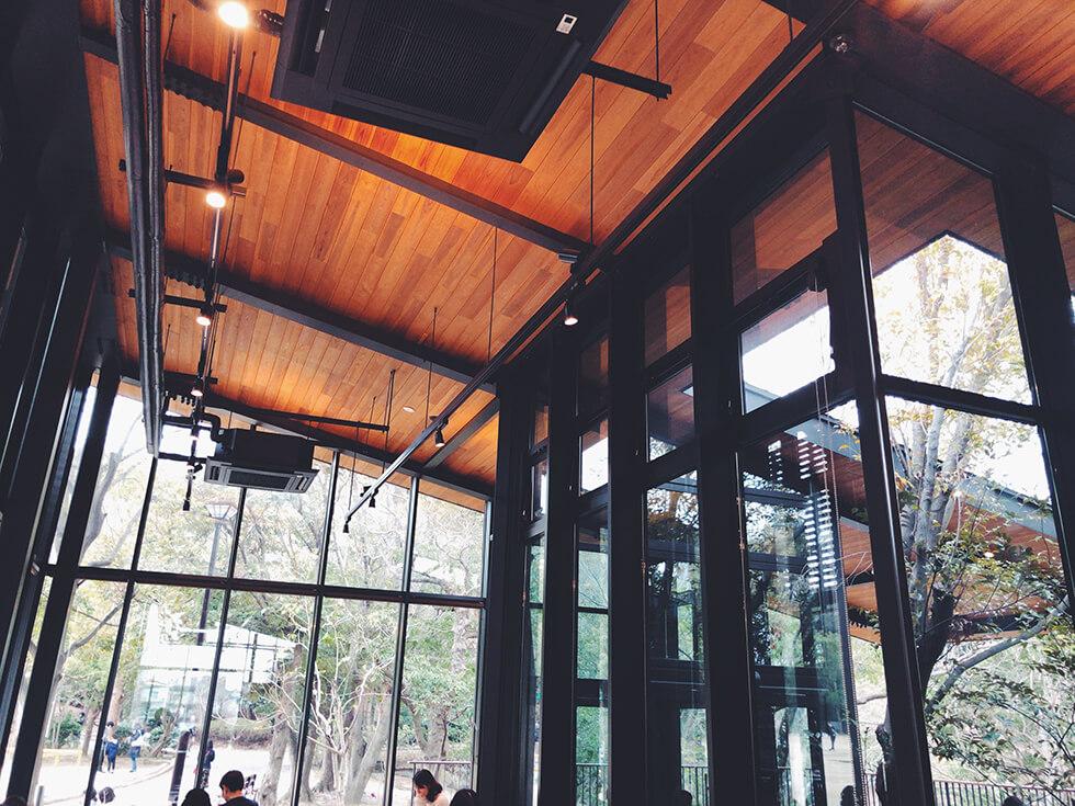 スターバックス浜松城公園店の天井