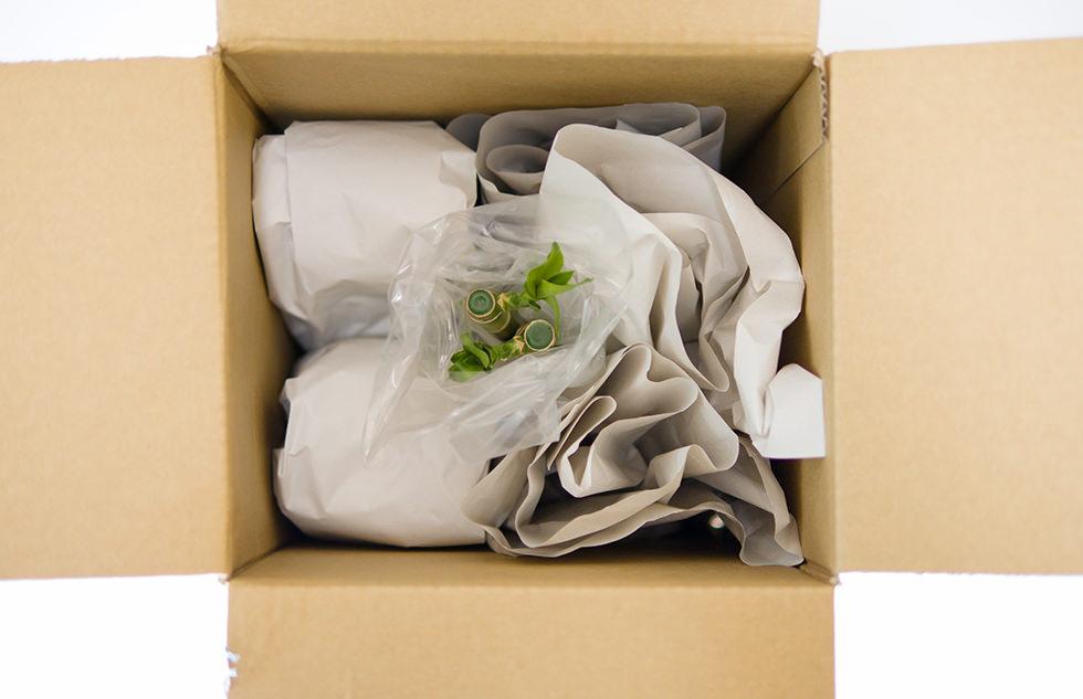 梱包されて届いたミリオンバンブー